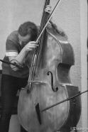 Preston feeling the Bass
